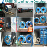PPGI & GI Loading in the Container on Qigdao Port