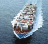 Sea Shipping Freight/Shipping Forwarder From China to The World