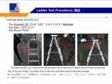 Ladder Stability Test
