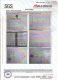 SGS Report-11