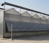 Venlo Type PC Greenhouse