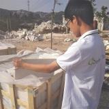 Mushroom Stone Inspection