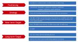 Krrass Development Strategy