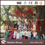 2014 Realho Stone Company Ootdoor Activities
