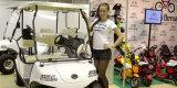 2013 HDK car show in Russia