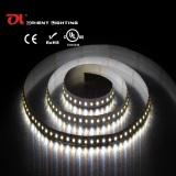 Color Tempeature Adjustble Flexible Strip-120 LEDs/M