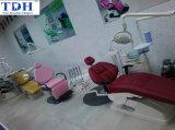 Dental Showroom