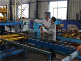 Papua New Guinea Customer Visit Reinforcing mesh welding machine