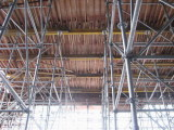 Scaffolding Project - 3