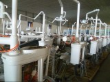 Dental Unit Factory Picture
