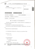 LETTER PATENT