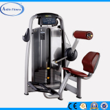 Exercise for Back Fitness Equipment Machines