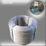 Steel Belt Package