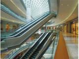 Escalator in Shopping Mall