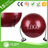 fitness ball with handle