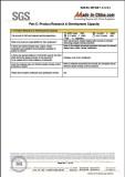 SGS Audit 07
