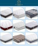 sping mattresss & memory foam mattress