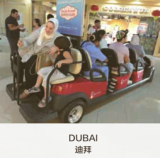 Dubai Agent
