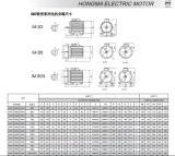 Iron shell motor installation size