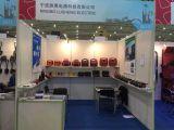 2015 Chengdu Auto fair for Ningbo Lusheng Company