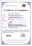 IP65 certification of solar street light