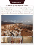 Own Quarry Imperial Gold Marble