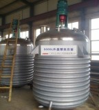 2015 Multifunction Stirred Tank Reactor