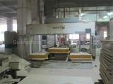 Veneer pressing machine