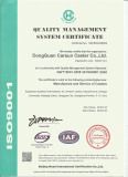 Carsun ISO9001:2008 quality demonstration in English