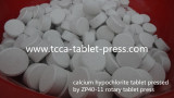 20g calcium hypochlorite tablet pressed by ZP40-11 rotary tablet press
