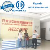 Uganda client 30t hammer mill