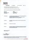 SGS REPORT 1