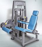 Pulsefitness Gym Equipment, Leg Curl(Ss06)
