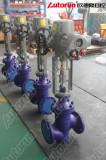 Autorun Electric gate valve