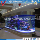 Acrylic Glass for Fish Tank