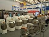 2010 shanghai fair