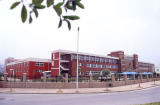 Tonny factory