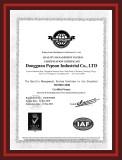Dongguan Pepson ISO Certificate(English)