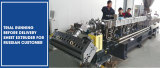 Sheet extruder for biodegradable Material to Russia