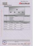 SGS Audit Report 4