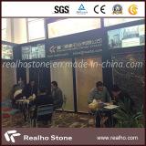 2013 Xiamen Stone Fair of Realho Stone Part 2