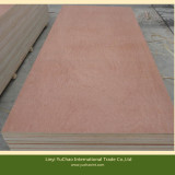 Hot Sale Commercial Plywood for Furniture/Door/Decoraton