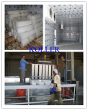 Large Project in Jordan of Ice Block Machine (25tons/Day)