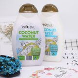 New arrival Natrual coconut water hydrating shampoo