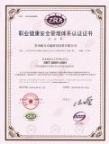 Cn GB/T 28001-2001