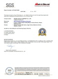 MIC Company Audit Report