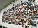 Photo Wall10