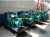 SUNDREAM got the 6 sets diesel engine irrigation pump from south africa