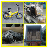 20inch Folding Electric Bicycles For 20′ Container