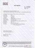 SGS test report for beams